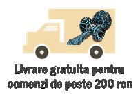 transport-gratuit